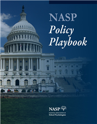 Policy Playbook thumbnail